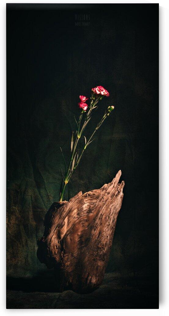 Inspiration Zen by Daniel Thibault artiste-photographe