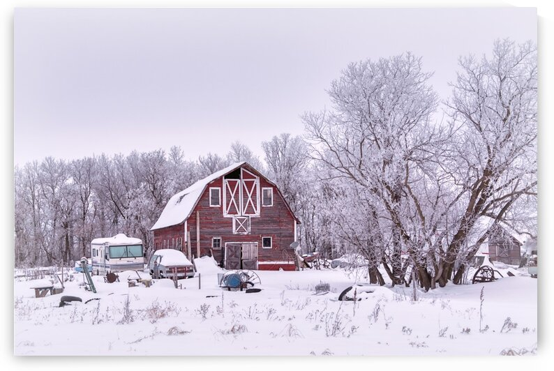 Red Barn in Winter by David Brophy