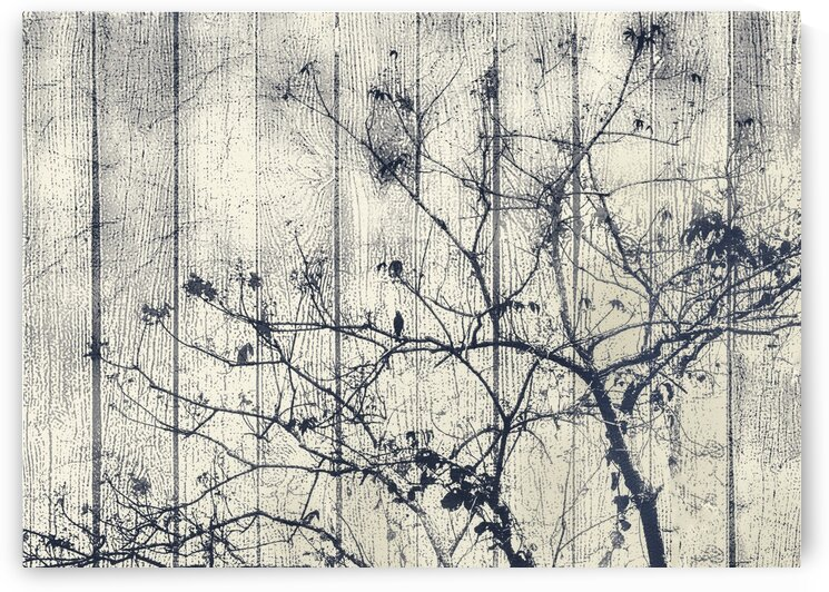 Black and White Botanical Motif Artwork by Daniel Ferreia Leites Ciccarino