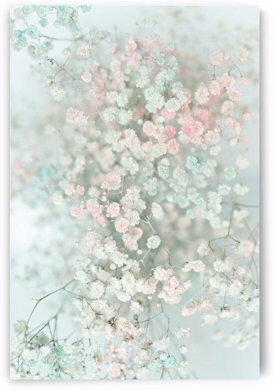 Daltana Pastel Floral Bina by Bri Boros