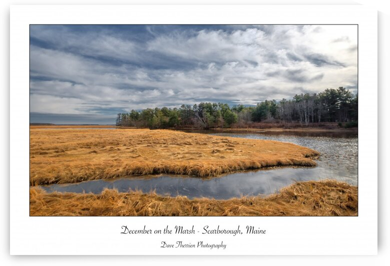 December on the Marsh by Dave Therrien
