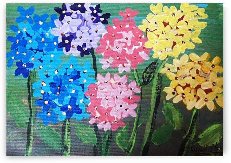 Hydrangea flowers by Yasmin MUhammad Elias