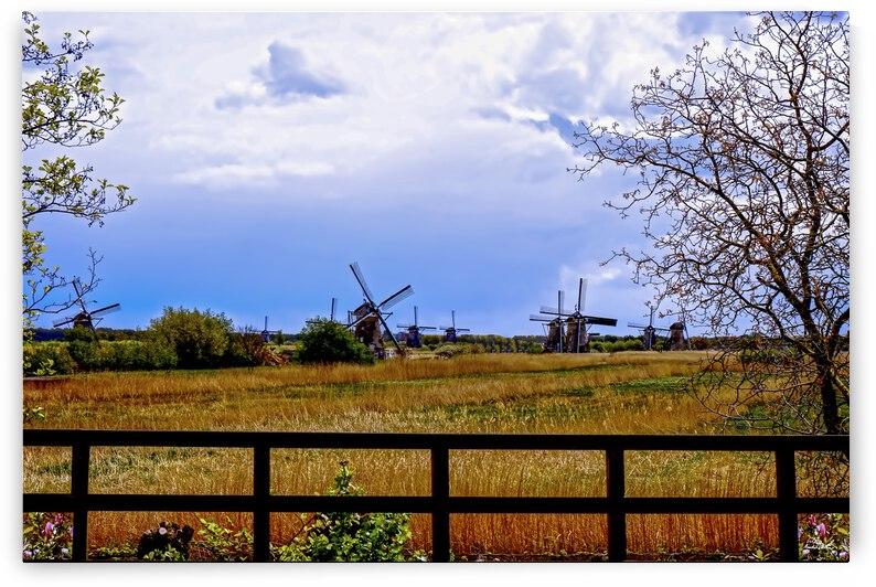 Windmills in Spring by 360 Studios