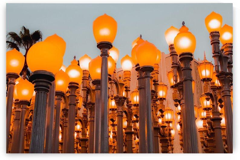 Urban Light at LACMA Los Angeles California USA by TimmyLA