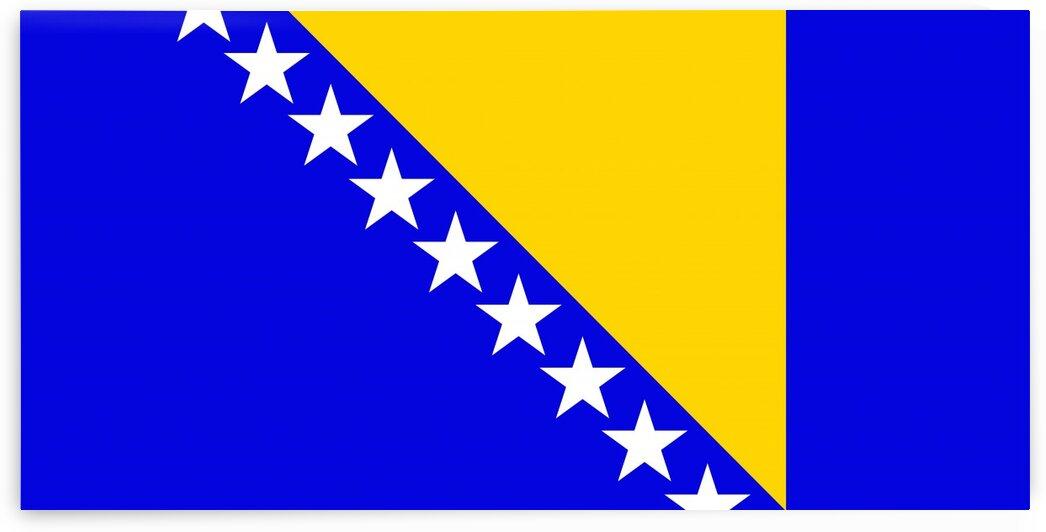 Bosnia and Herzegovina by Tony Tudor