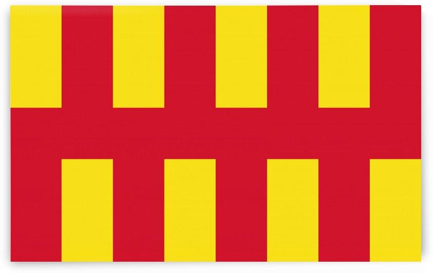 Northumberland flag by Tony Tudor