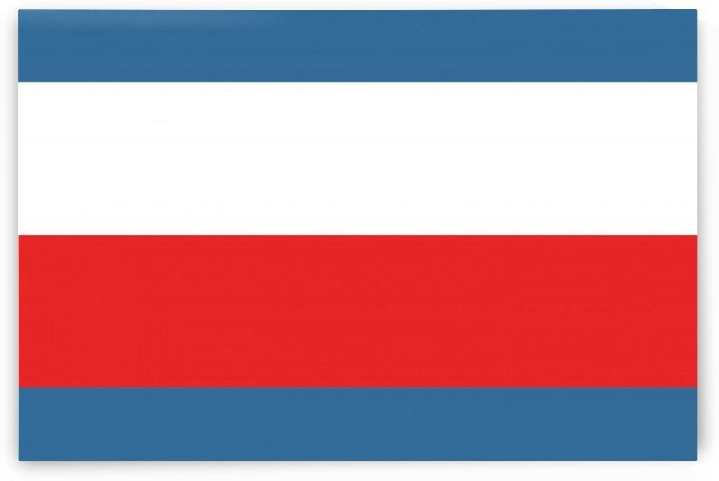 Trenciansky flag by Tony Tudor