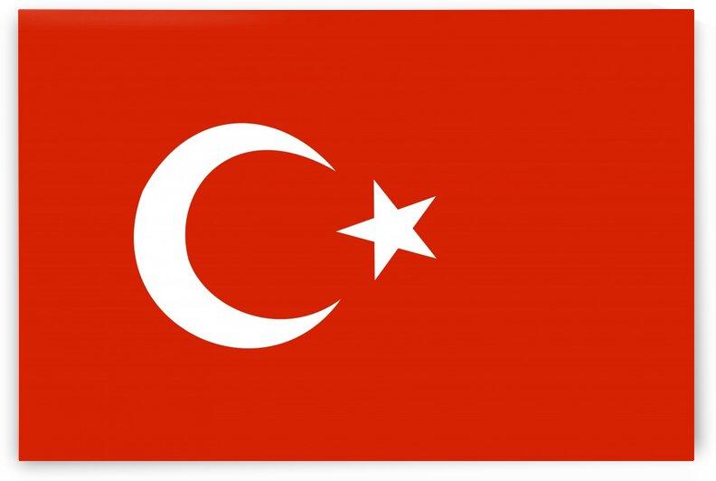 Turkey by Tony Tudor