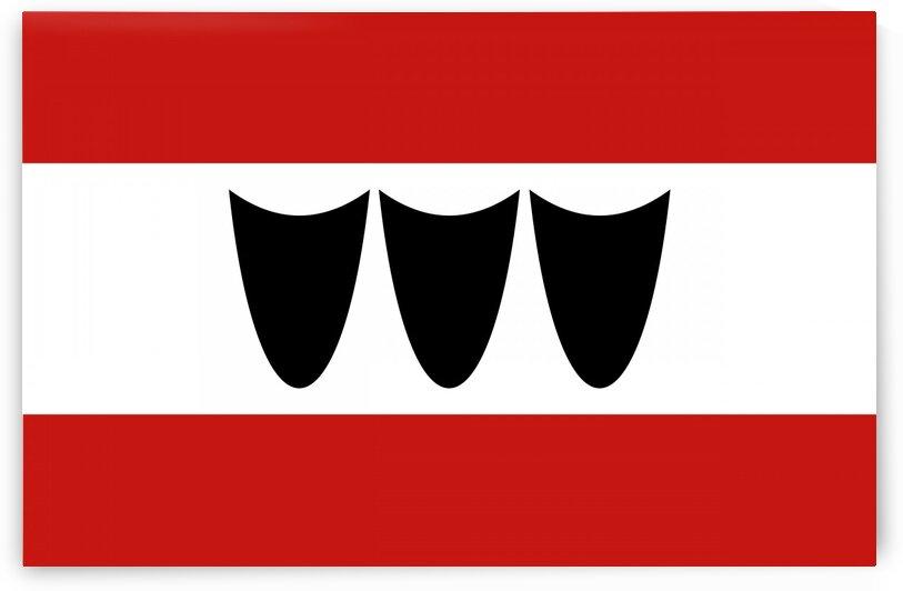 Trebic flag by Tony Tudor