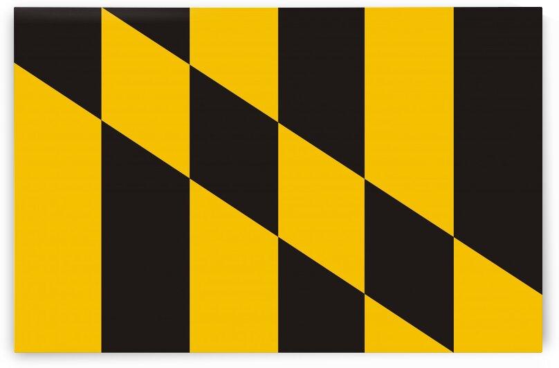 baltimore flag by Tony Tudor