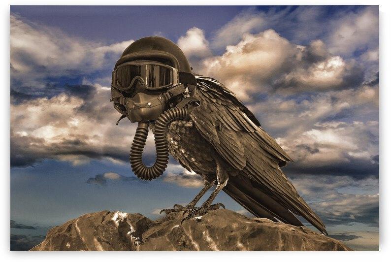 Apocalyptic Future Concept Artwork by Daniel Ferreia Leites Ciccarino