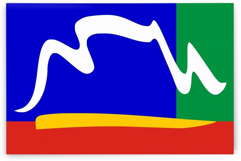 Cape Town flag by Tony Tudor