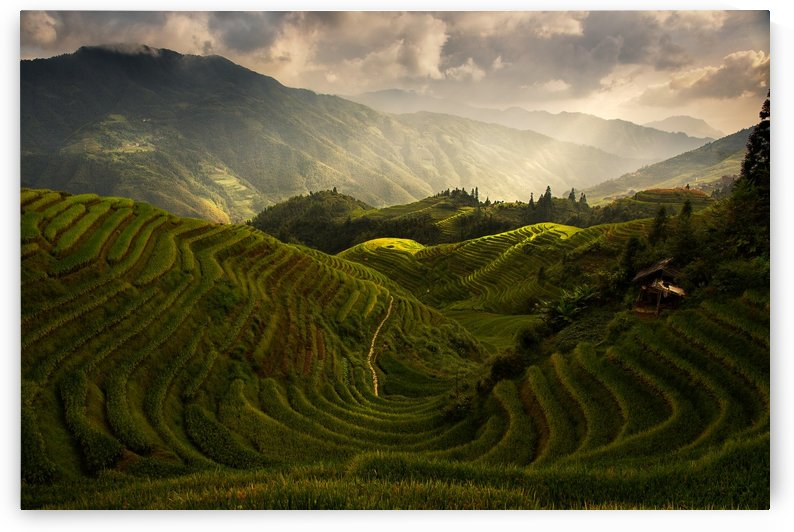 A Tuscan Feel in China by 1x