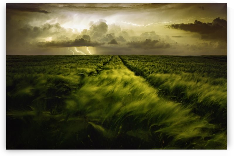 Journey to the Fierce Storm by 1x