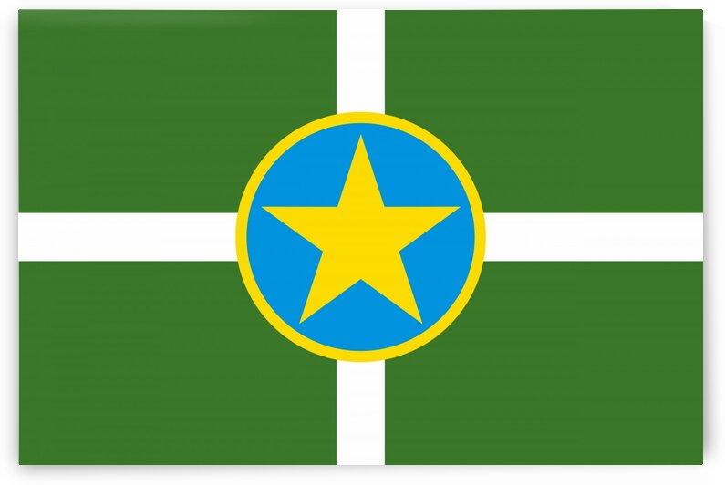 Jackson city Mississippi flag by Tony Tudor