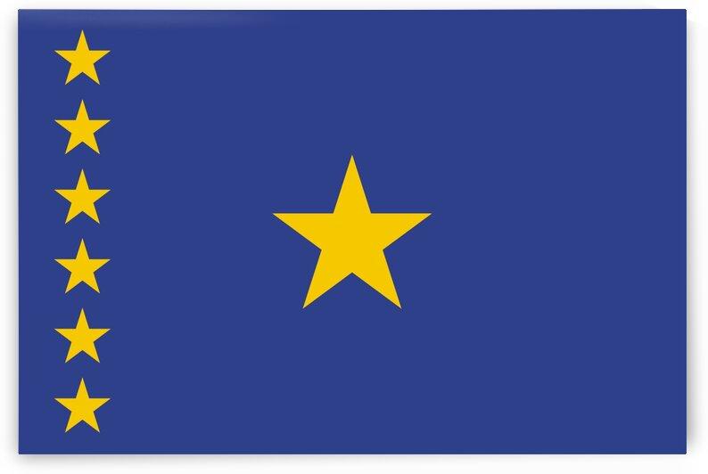 Kinshasa flag by Tony Tudor