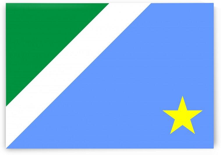 Mato Grosso do Sul flag Brazil by Tony Tudor