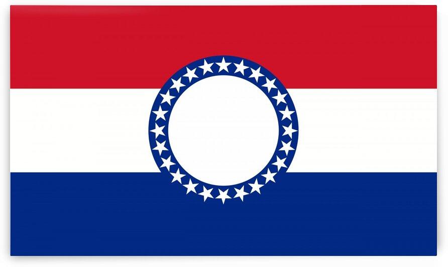 Missouri flag by Tony Tudor