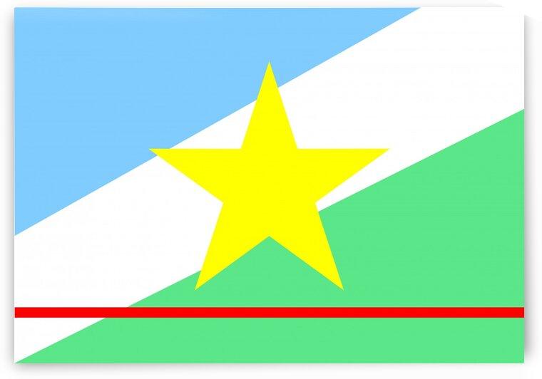 Roraima flag Brazil by Tony Tudor