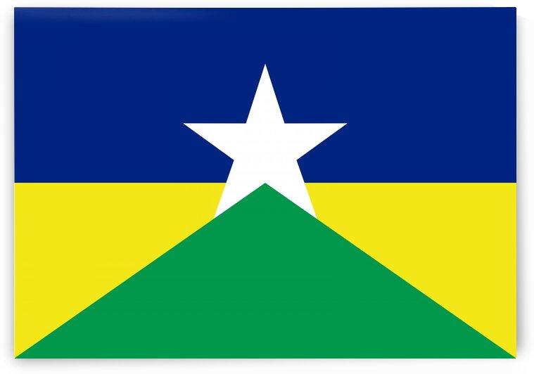 Rondonia flag Brazil by Tony Tudor