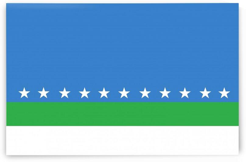 San Jose flag by Tony Tudor