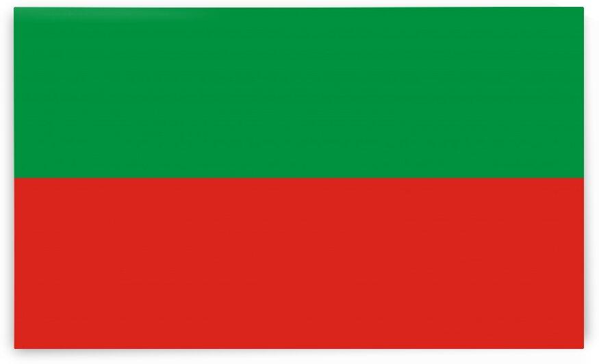Sac and Fox Nation flag by Tony Tudor