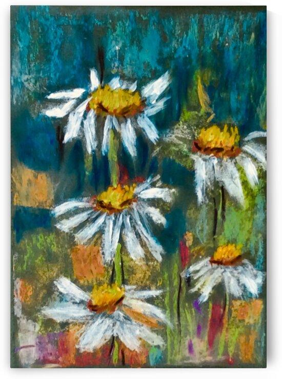 The Daisy Field  by Zaramar Paintings