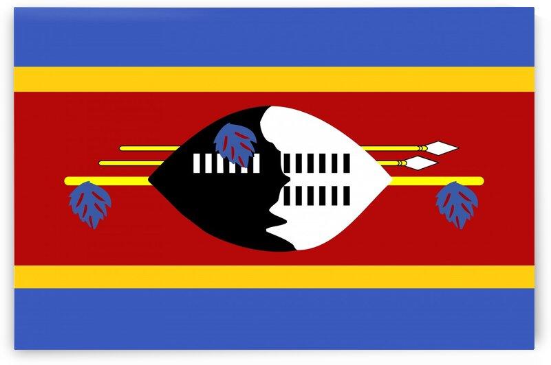 Swaziland f by Tony Tudor