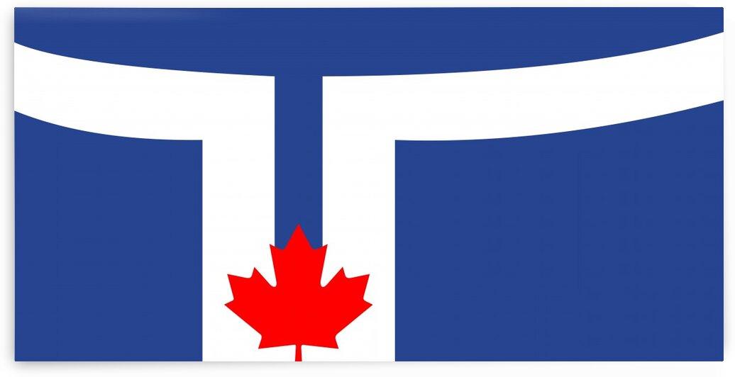Toronto city flag by Tony Tudor