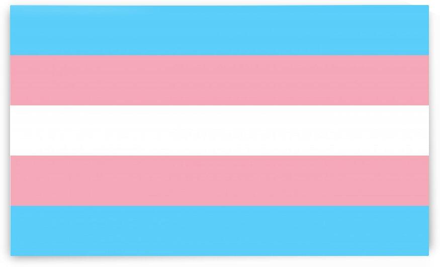 trans flag by Tony Tudor