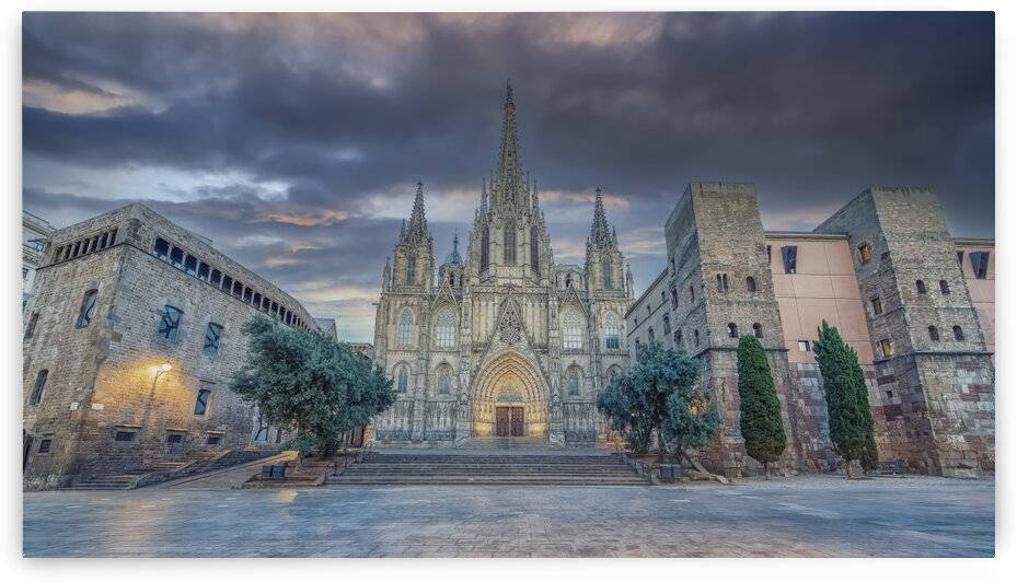 Barcelona cathedral by Manjik Pictures