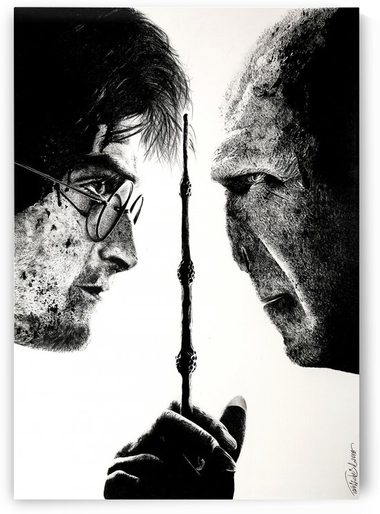 Harry Potter and Lord Voldemort by Tpencilartist