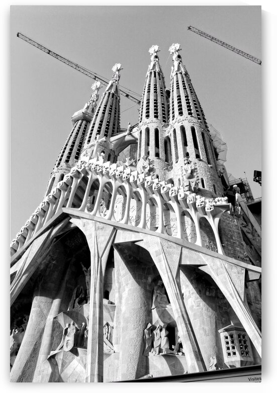 Barcelona Cathedral - La Sagrada Familia in black and white by Bentivoglio Photography