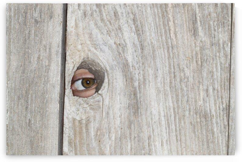 seanmurphyphoto eyeball by Sean Murphy Print Shop