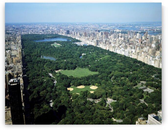 Aerial view of Central Park New York by Tony Tudor