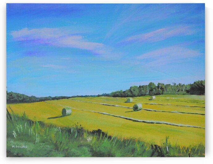 peihayfields by Marcel Goulard