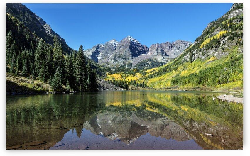Fall aspens in San Juan County Colorado USA by Tony Tudor