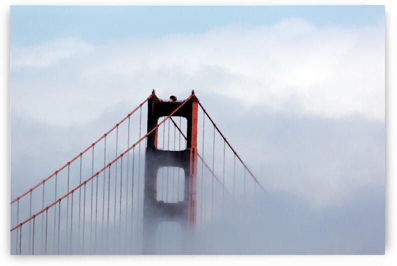 Golden gate bridge San Fransisco USA by Tony Tudor