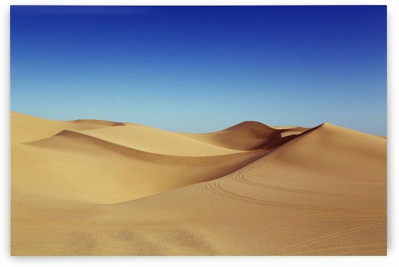 Imperial Sand Dunes by Tony Tudor