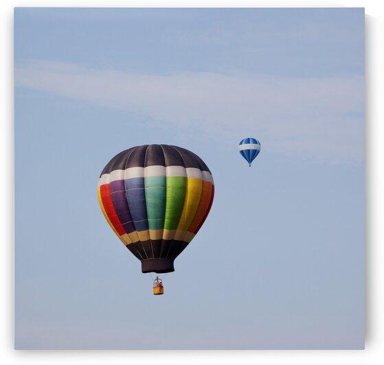 Hot Air Balloon by Tony Tudor
