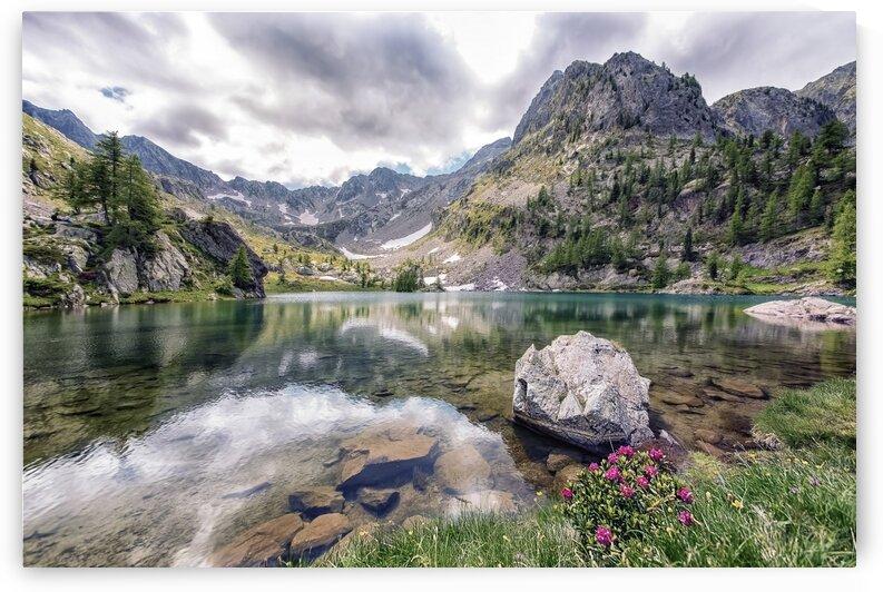 Trecolpas by Manjik Pictures