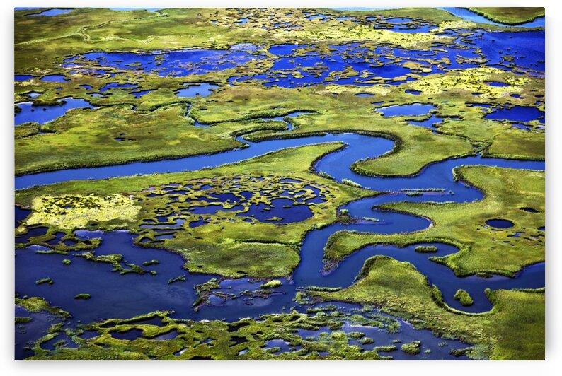 Marshlands on the New Jersey Shore near Little Egg Harbor by Tony Tudor