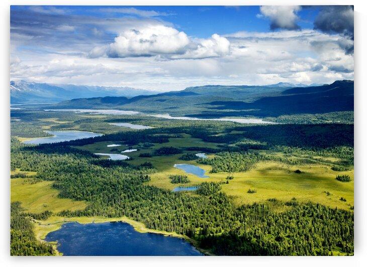 Mount McKinley or Denali The Great One in Alaska by Tony Tudor