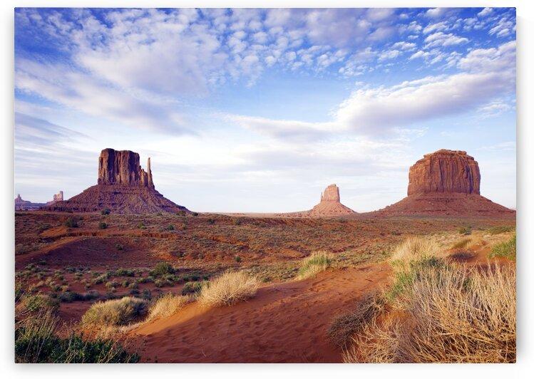 Monument Valley by Tony Tudor