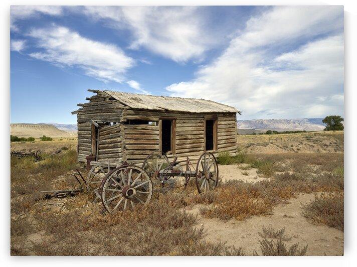 Old cabin and buckboard wheels in Big Horn County  Wyoming. by Tony Tudor