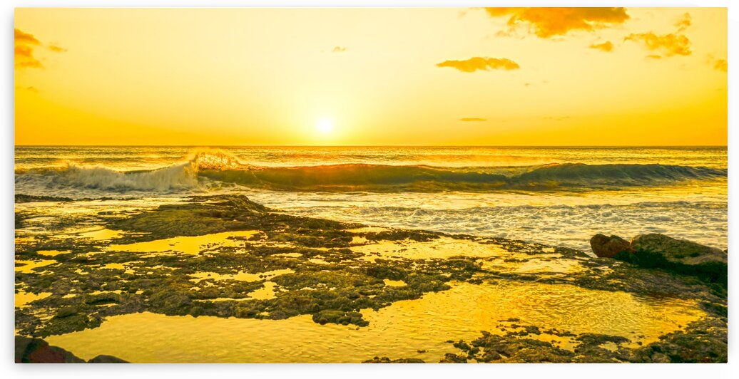 Golden Moment Panorama by 1North