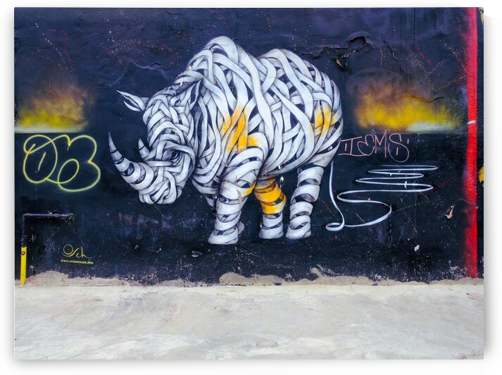 Graffiti Rahino by Lovely and Nicely