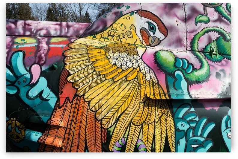 Parrot Graffiti by Lovely and Nicely