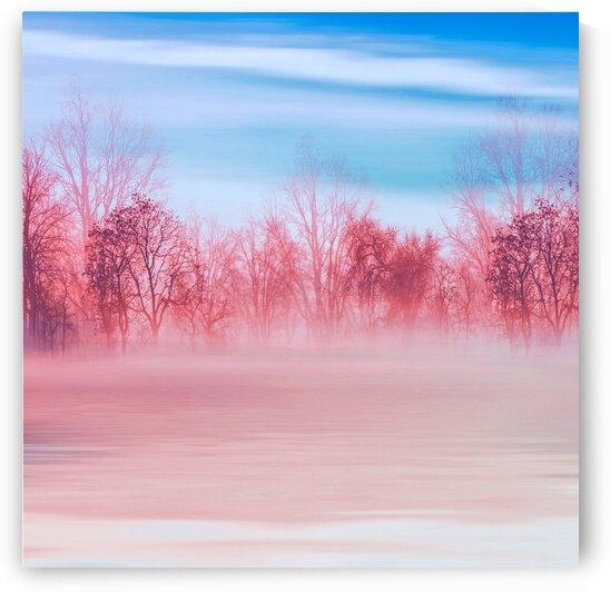 Foggy morning in pink and blue. by Ievgeniia Bidiuk