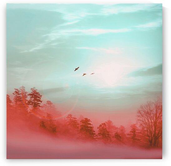 Orange fog over a forest glade. by Ievgeniia Bidiuk
